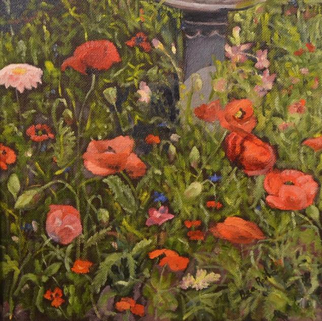 Poppies by the Bird Bath