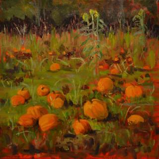 Pumpkin Patch at Myer's Farm