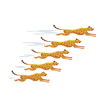 cheetahs_circular.png