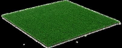 Grama artificial Oryzon Spring