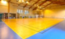 Tarkett Omnisports floor for futsal