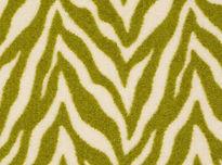 zesty zebra.jpeg