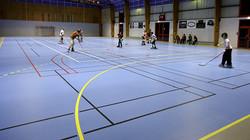 Piso deportivo Omnisports cancha deportiva