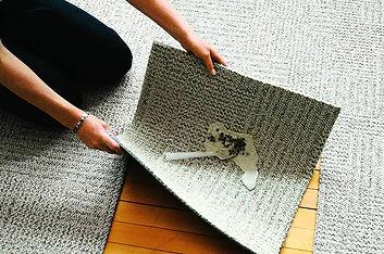 Limpieza de las alfombras FLOR