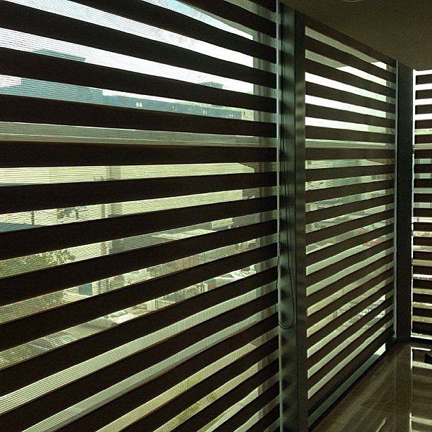 Cortinas zebras Neolux by Vertilux