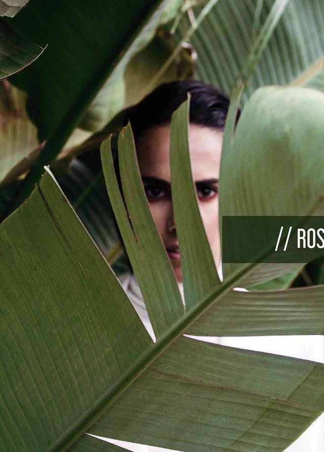 rosana3.jpg