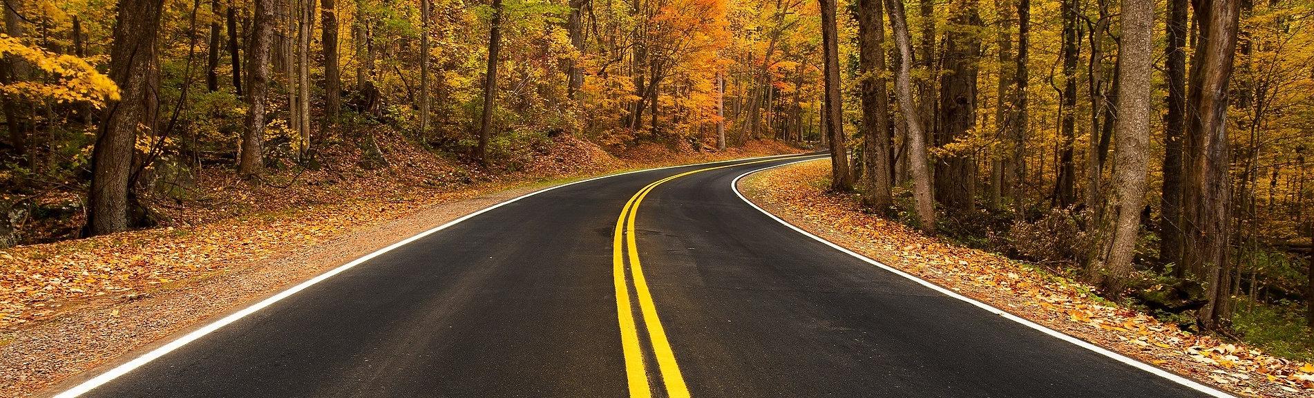 rural-road-981757-1.jpg