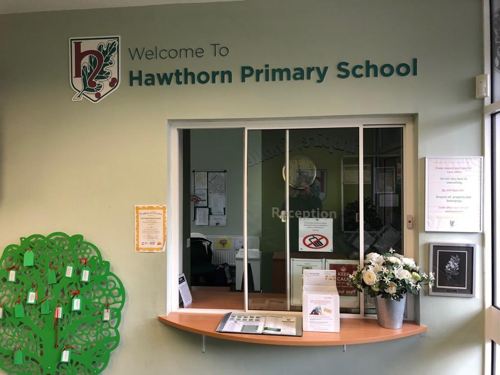 Hawthorn Cut Foamex.jpg