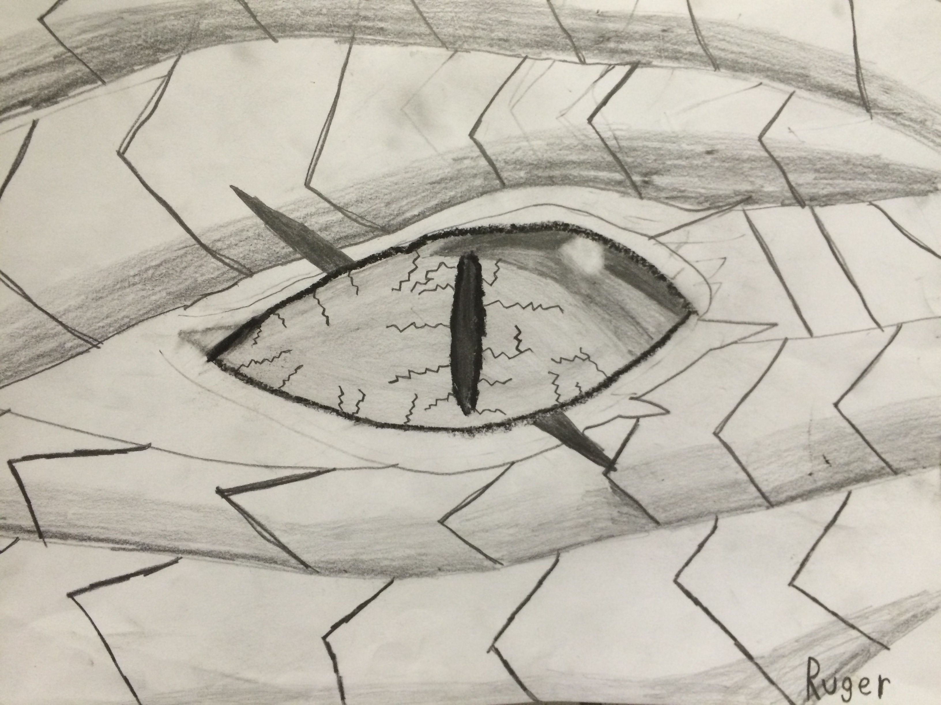 Dragon Eye Drawing