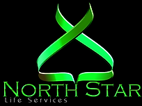North Star Life Services Logo Green2.png