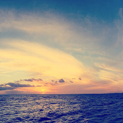 Na'pali Coast sunset, right after the humpback whales came up to wave _hello__#kauailove #grateful #