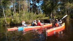 canoeing walpole