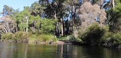 Frankland River Walpole