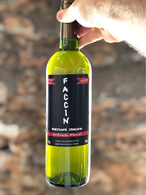 Faccin Riesling Itálico 2019 750ml