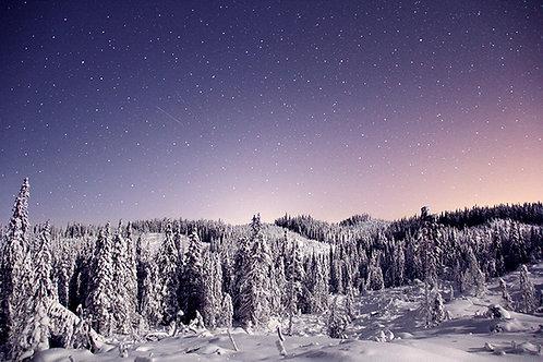 Vinternatt Øståsen, Hadeland