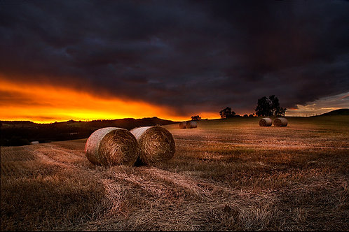 Høst på Hadeland
