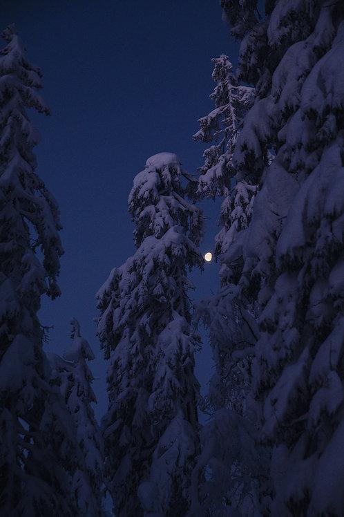Måne over Øståsen
