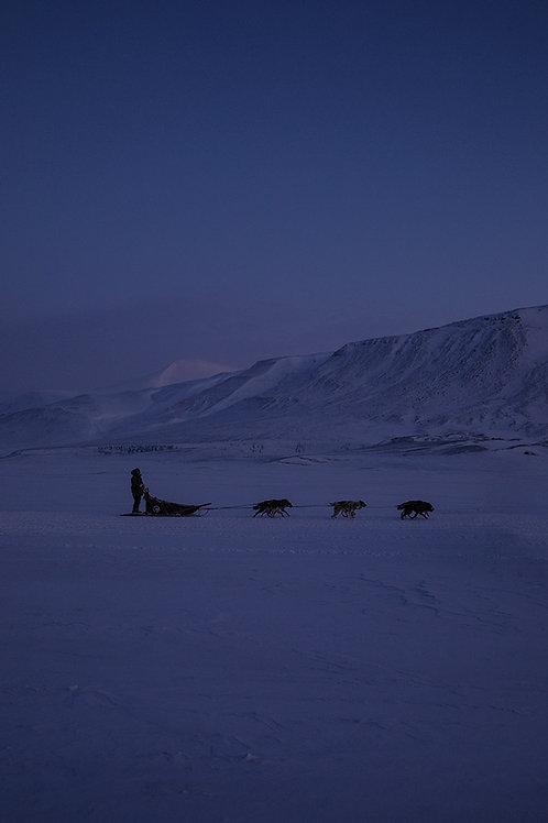 Arktisk lys 3