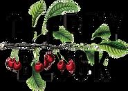 cherry-block-logo.png