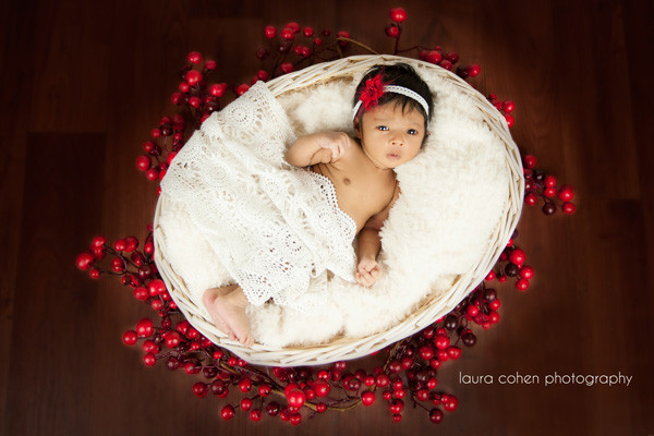 Laura Cohen Photography in Düsseldorf, newborn girl in a basket