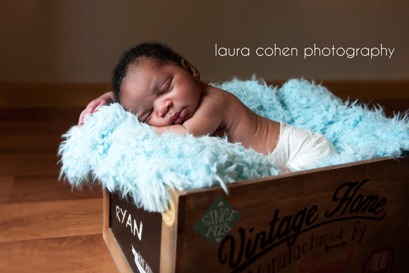 laura cohen photography | newborn sleeping