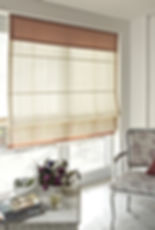 blinds shades & shutters