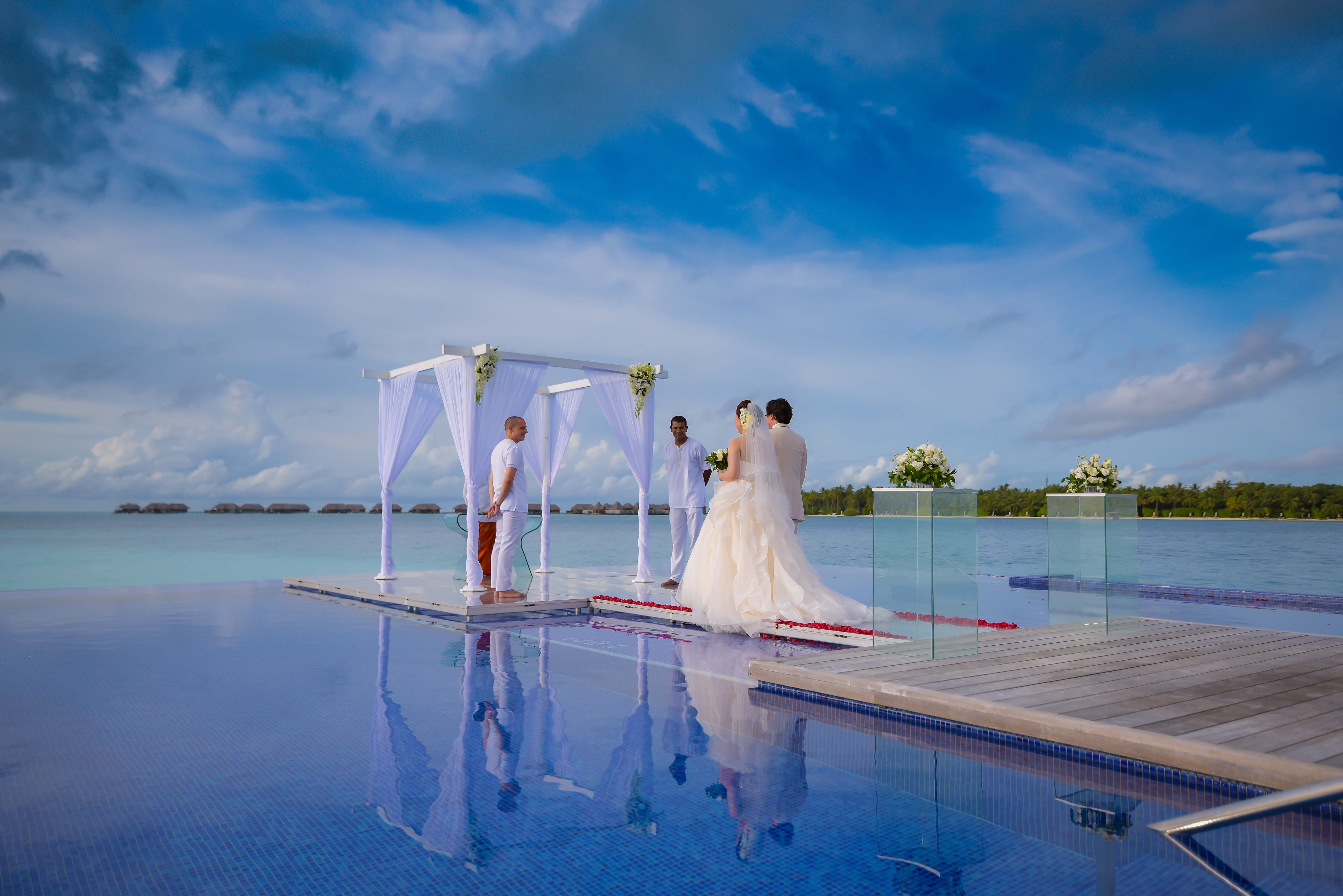 infinity pool wedding image