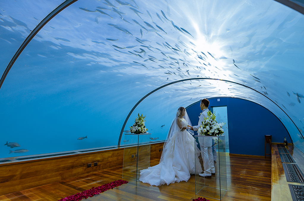 Under water wedding image