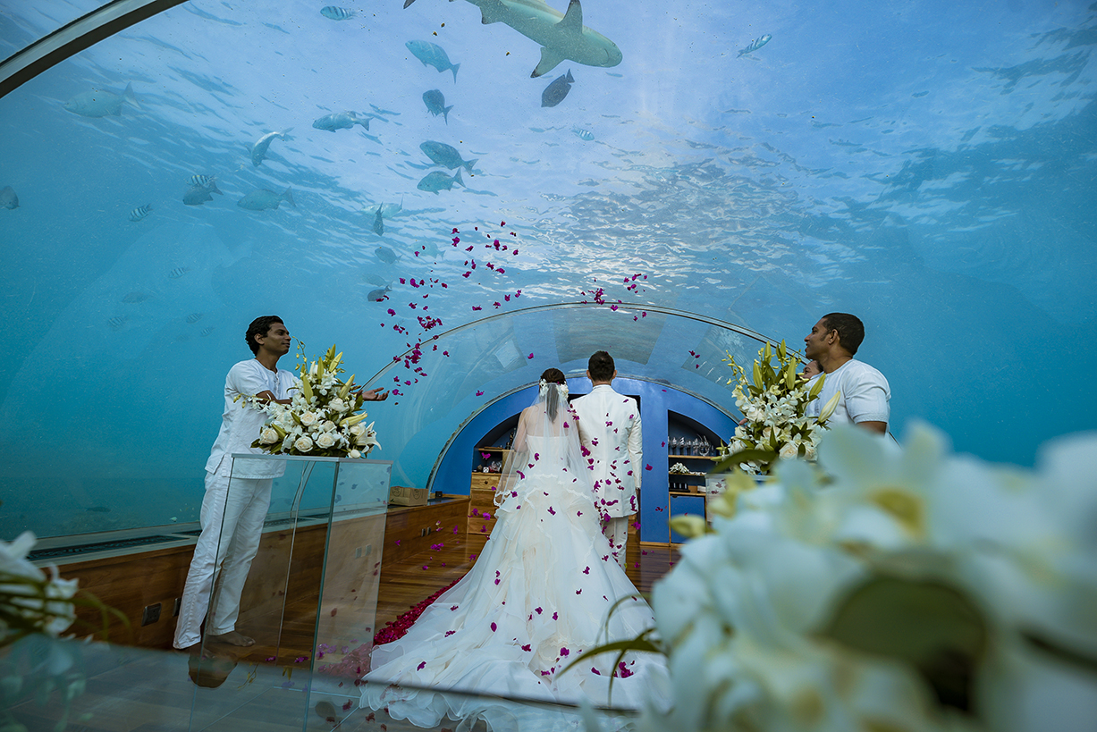 Underwater wedding image