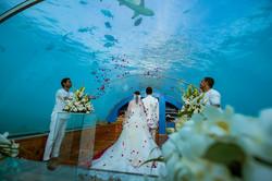 Underwater wedding image