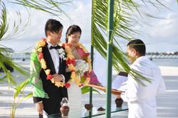 Conrad Beach Wedding image (4)