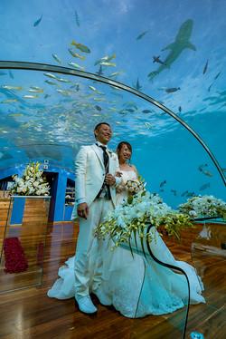 Under water wedding image