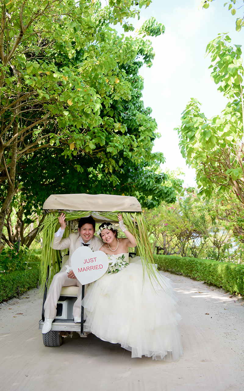 image Wedding buggy