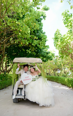 image Wedding buggy