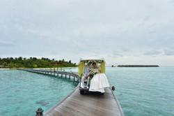 wedding buggy