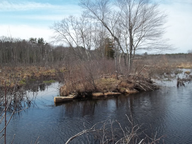 image from Charles River MEadowlands webpage