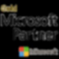 microsoft-partner-logo.png