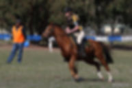 Gisborne Games Rider