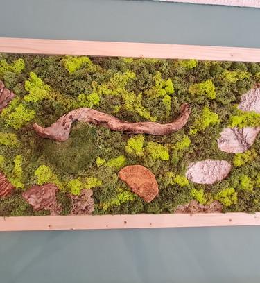 Large Statement Moss Wall Art.