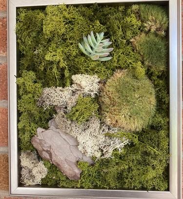 Natural Preserved Moss Wall Art.