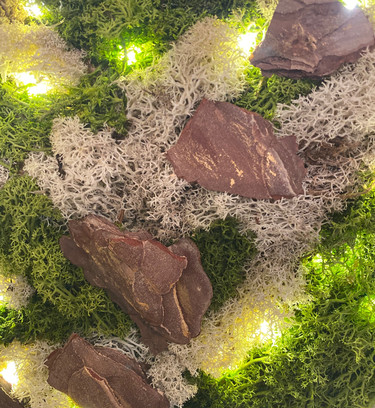 Preserved moss picture with LED Lights