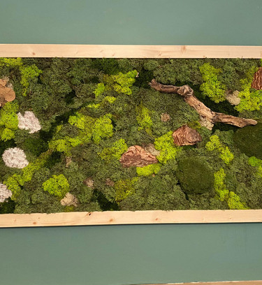 Natural Preserved Moss Wall Art