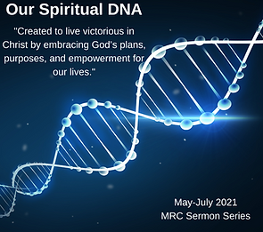 Our Spiritual DNA for website.png
