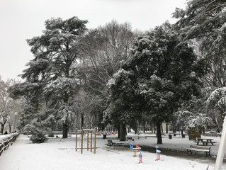 A Winter Wonderland - in March!
