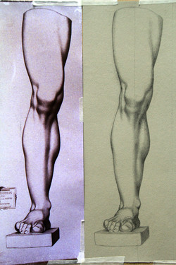 Pencil Bargue drawing - Leg study