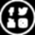 Social Media Managment services: Facbook, Twitter, Youtube, Instagram