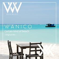WM_certain_kind_of_beach