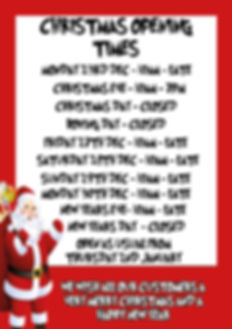 CHRISTMASTIMES.jpg