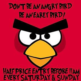 angrybird.jpg
