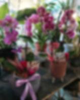 Annem İçin ❤️ En Şık Orkide Tasarımları